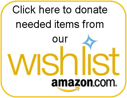 Amazon Wish List Link