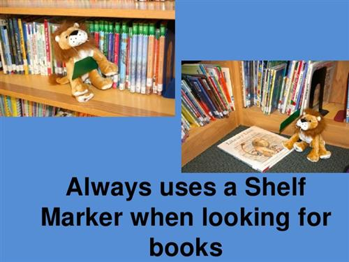Using a Shelf Marker Lesson
