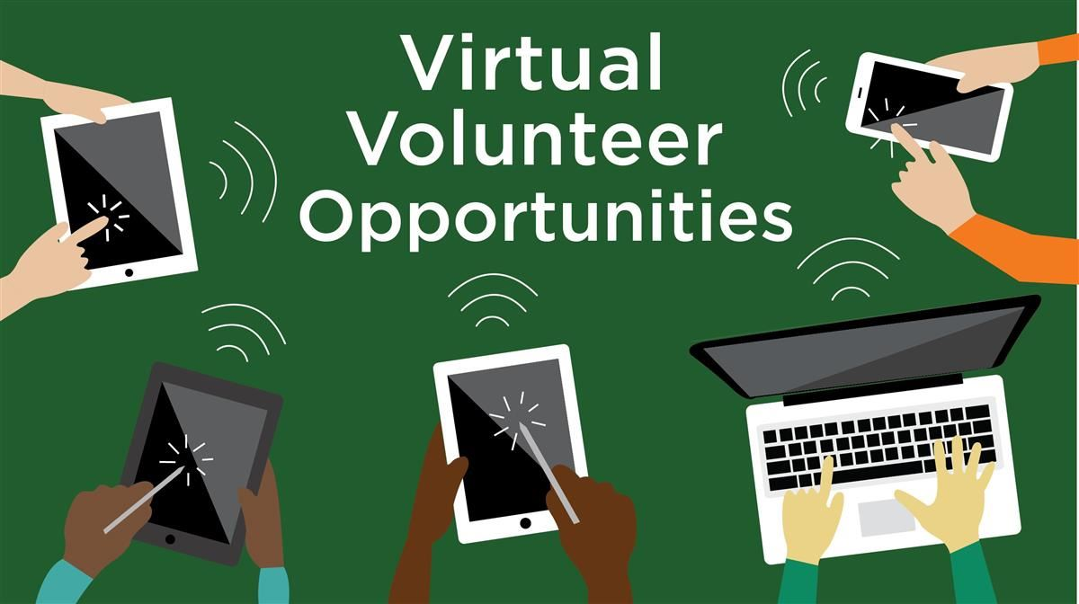 Have extra time this summer? Do some virtual volunteering or other activities online.